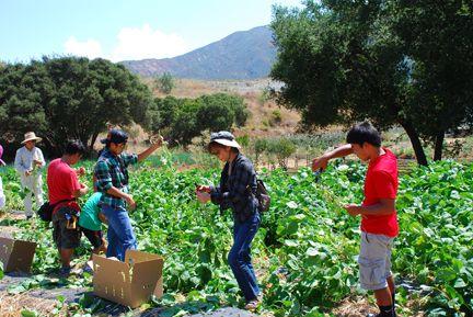 20110919_farm02