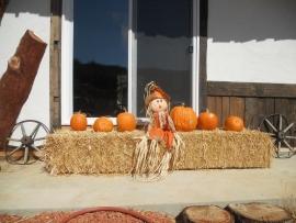 20111020_pumpkin