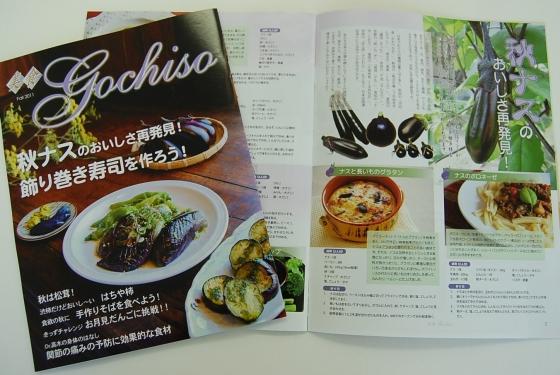 20111010_gochiso