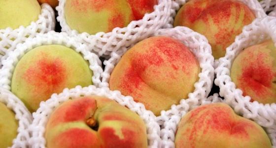 20110617_peach