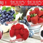 Berry Berry Fair!