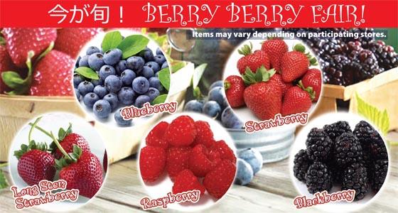 berryberryfair copy