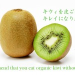we recommend that you eat organic kiwi without peeling it!<br>キウイフルーツを皮ごと食べてきれいになりましょう!