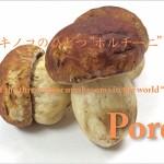 "One of the three major mushrooms in the world ""Porcini""<br> 世界三大キノコのひとつ""ポルチー二"""