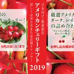Nijiya Cherry Gift 2019 / ニジヤ チェリーギフト 2019